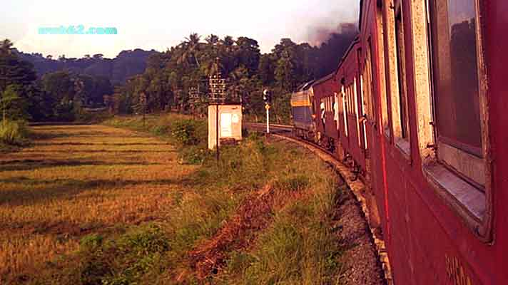 Photo from a train ride in Sri Lanka